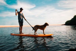 man and his dog on a stand up paddle board in the ocean